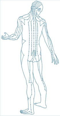 Acupuncture Points picture